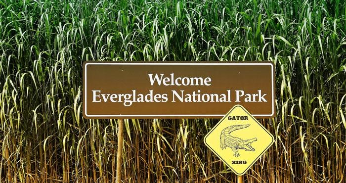 Everglades National Park in Florida